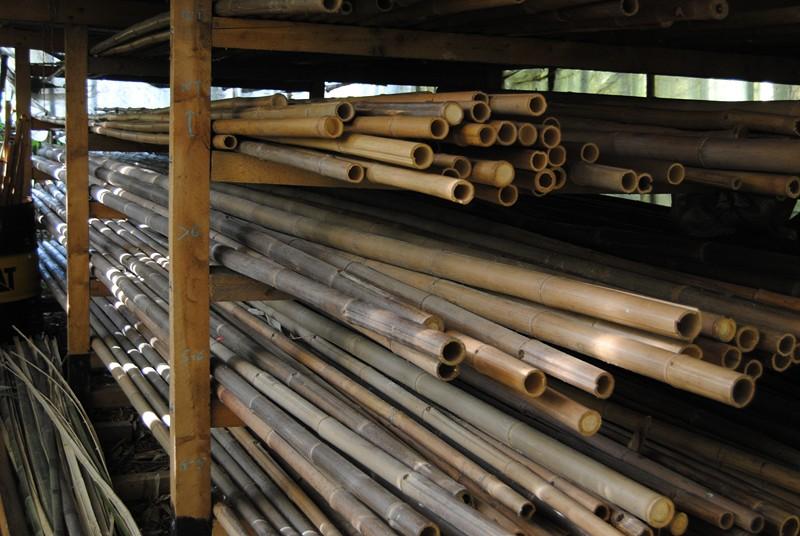 canne di bamboo nell'essiccatoio del nostro bambuseto