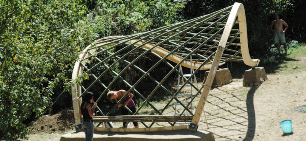 Whale roof Bambuseto