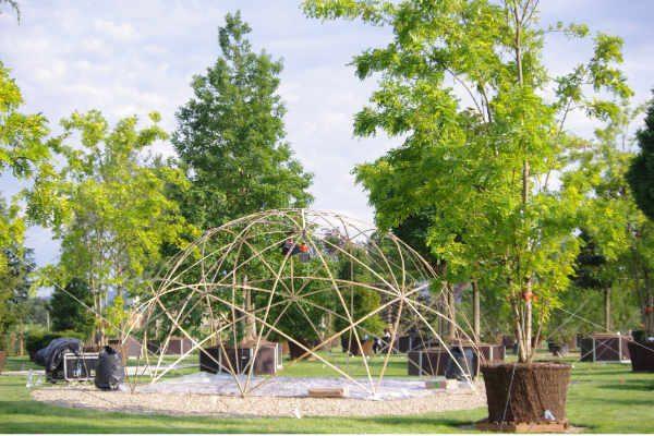 Pistoia Nursery park 4