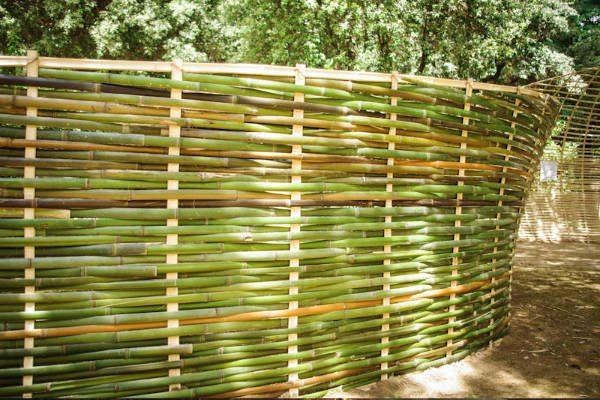 dettaglio-intreccio-bambu-tetard